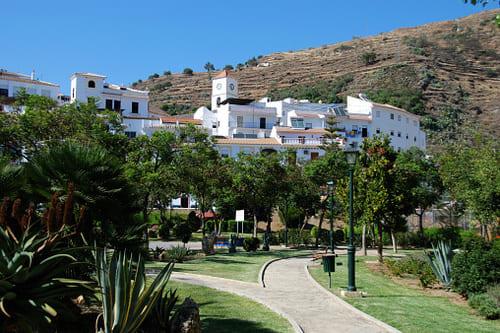 Тур в Испанию Альгарробо
